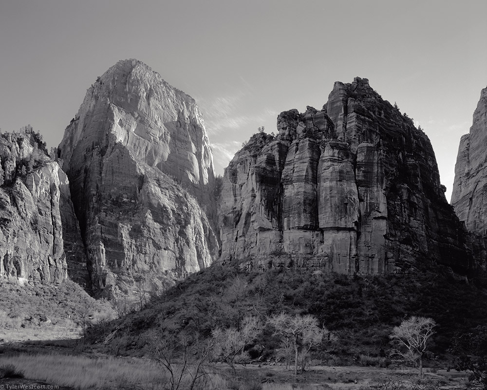 The Great White Throne and The Organ, Zion National Park