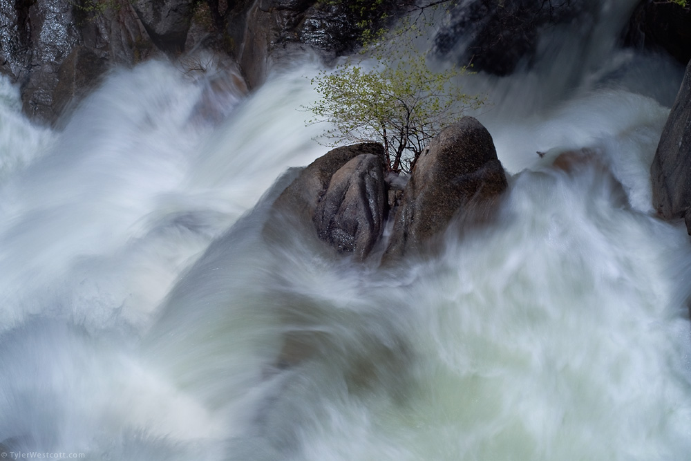Cascade Creek Detail, Yosemite National Park