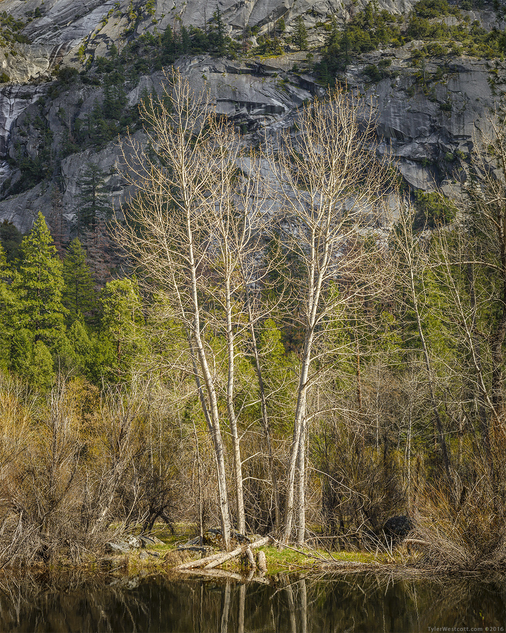 Merced River, Spring, Yosemite National Park