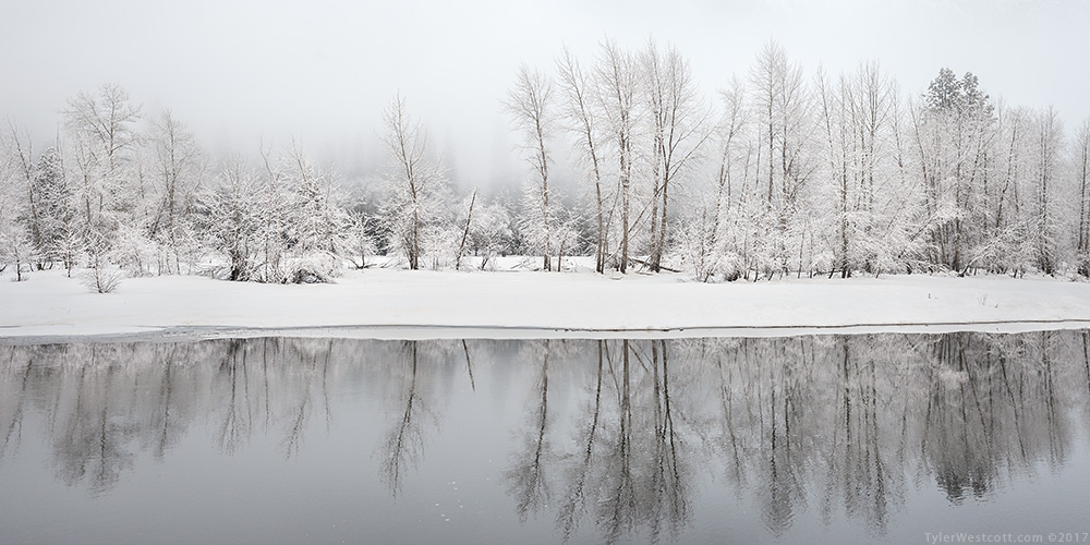 Merced River Bank, Winter, Yosemite National Park